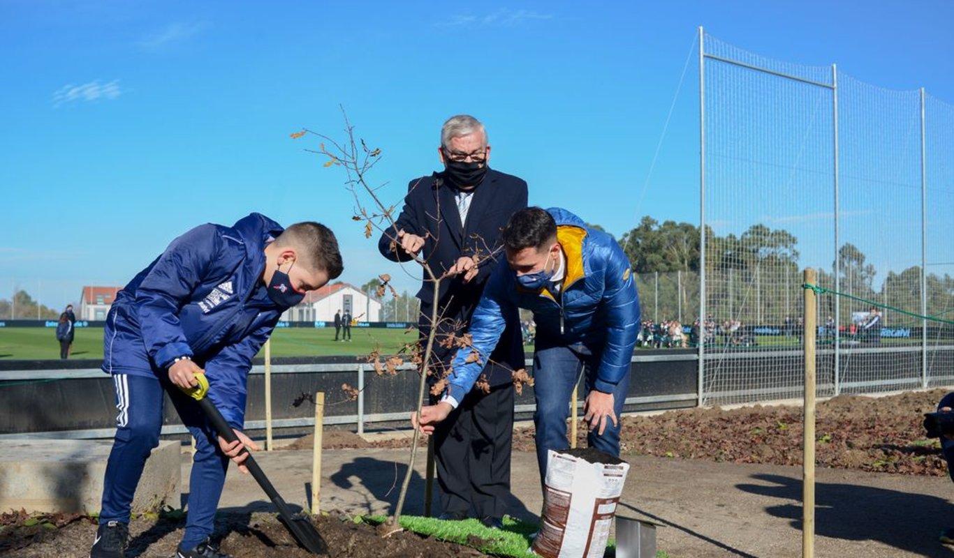 Germán, jugador del Benjamín A, Jorge Lorenzo, presidente de la Comunidade de Montes de Pereiras, y Hugo Mallo, capitán del primer equipo, plantan un carballo en el acto de ayer.
