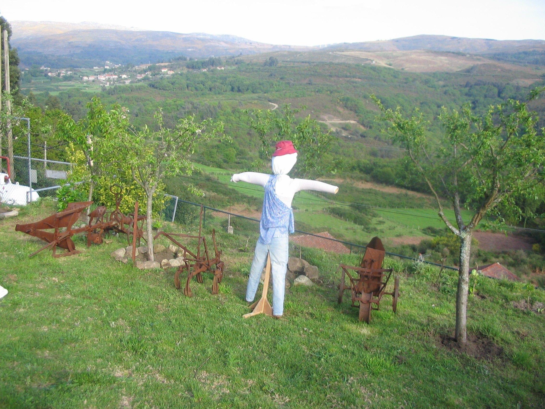 Rboles frutales como regalo de reyes para los covelenses - Como cuidar los arboles frutales ...